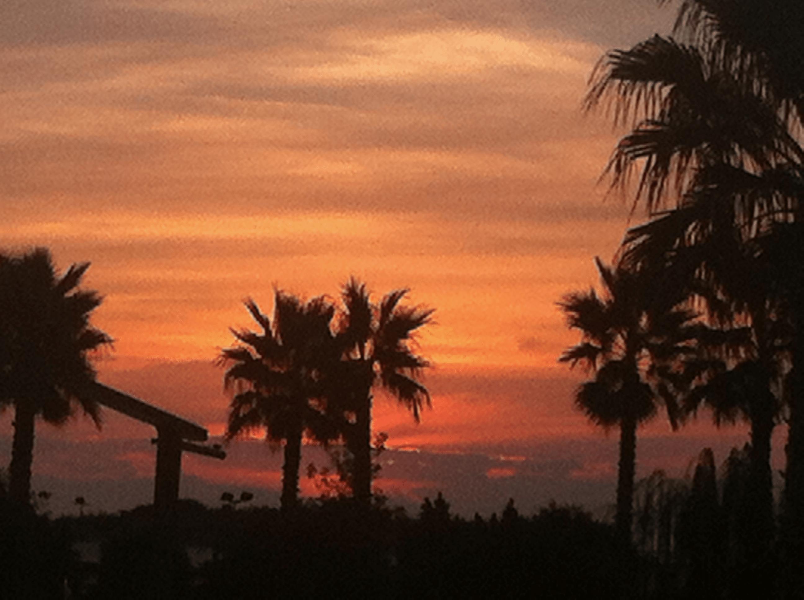Sonnenuntergang 2 - Tui Magic Life Imperial Side Türkei - Videoleben