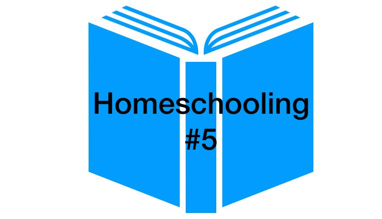 Homeschooling Tag 5 - Videoleben