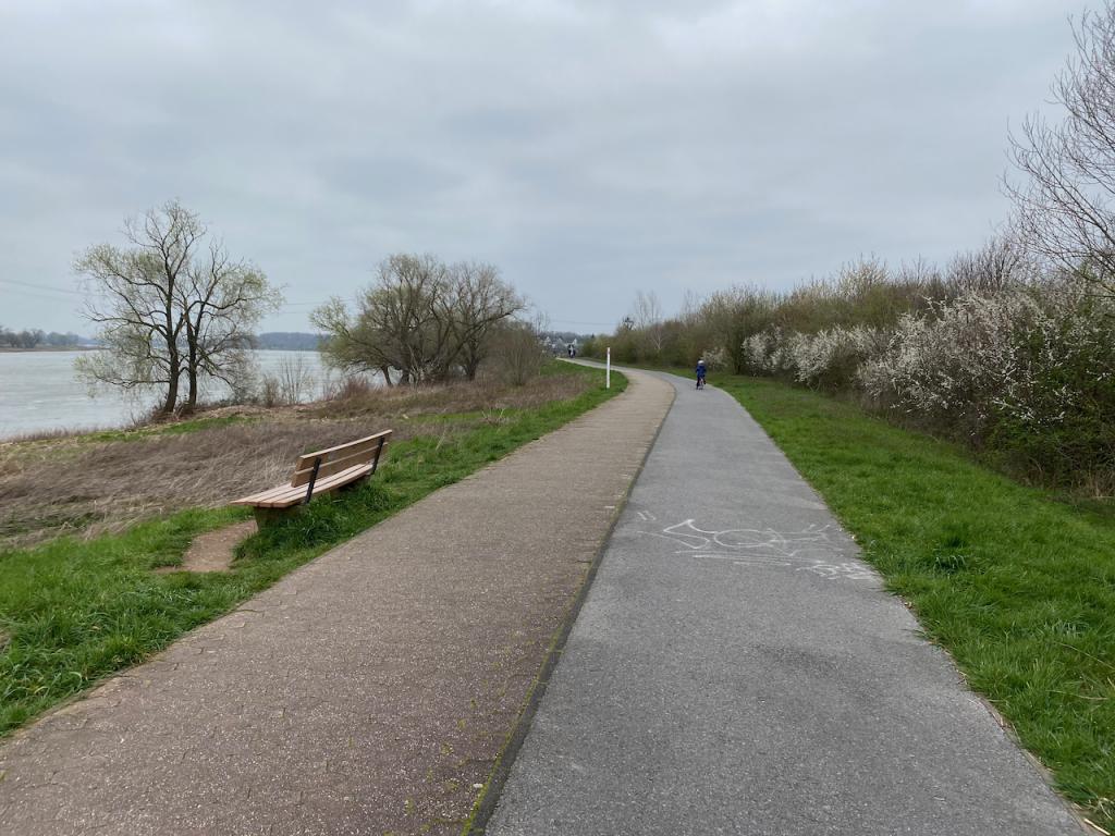 Spaziergang am Rhein - Videoleben