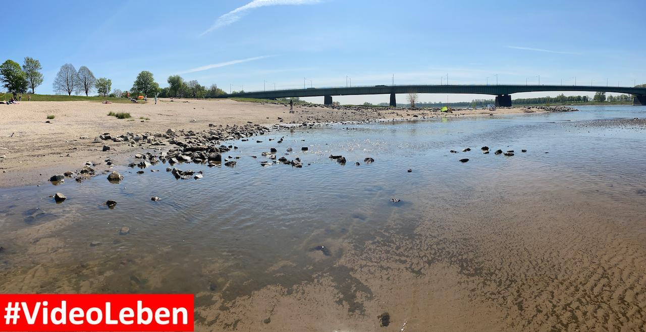 Panorama - Sandstrand am Rhein bei Düsseldorf Hamm - Videoleben