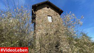 Trafohäuschen in Wollseifen - lost places - Geisterdorf im Nationalpark Eifel - Videoleben