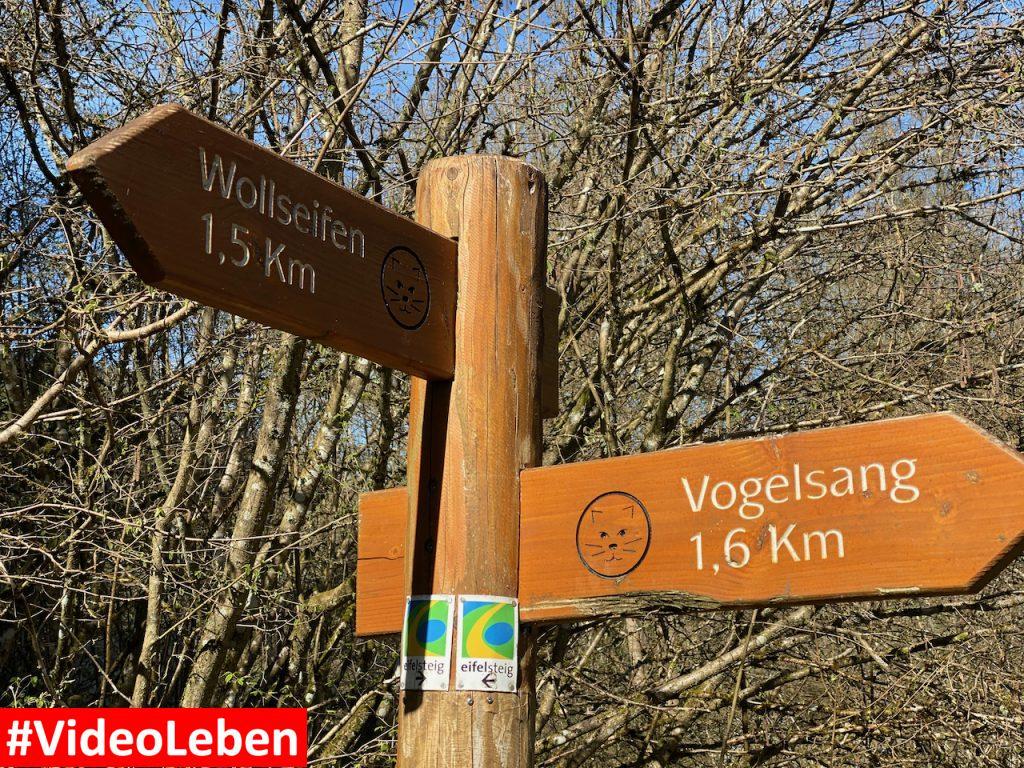 Wegweiser im Wald - ehemalige NS-Ordensburg Vogelsang im Nationalpark Eifel - Videoleben