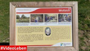 Wollzich in Wollseifen - lost places - Geisterdorf im Nationalpark Eifel - Videoleben