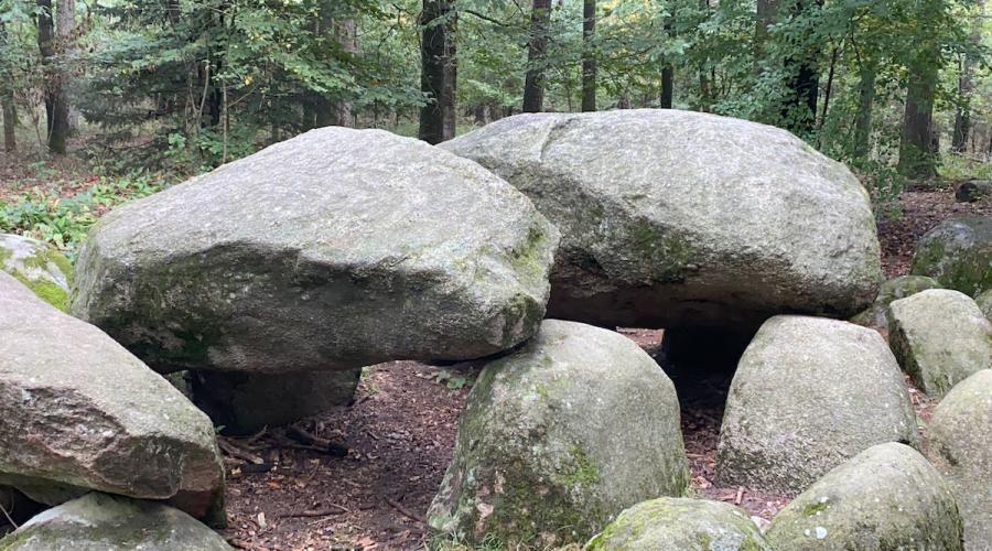 Großsteingrab - Das Stonehenge Niedersachsens - Ausflugstipps trotz Corona #VideoLeben