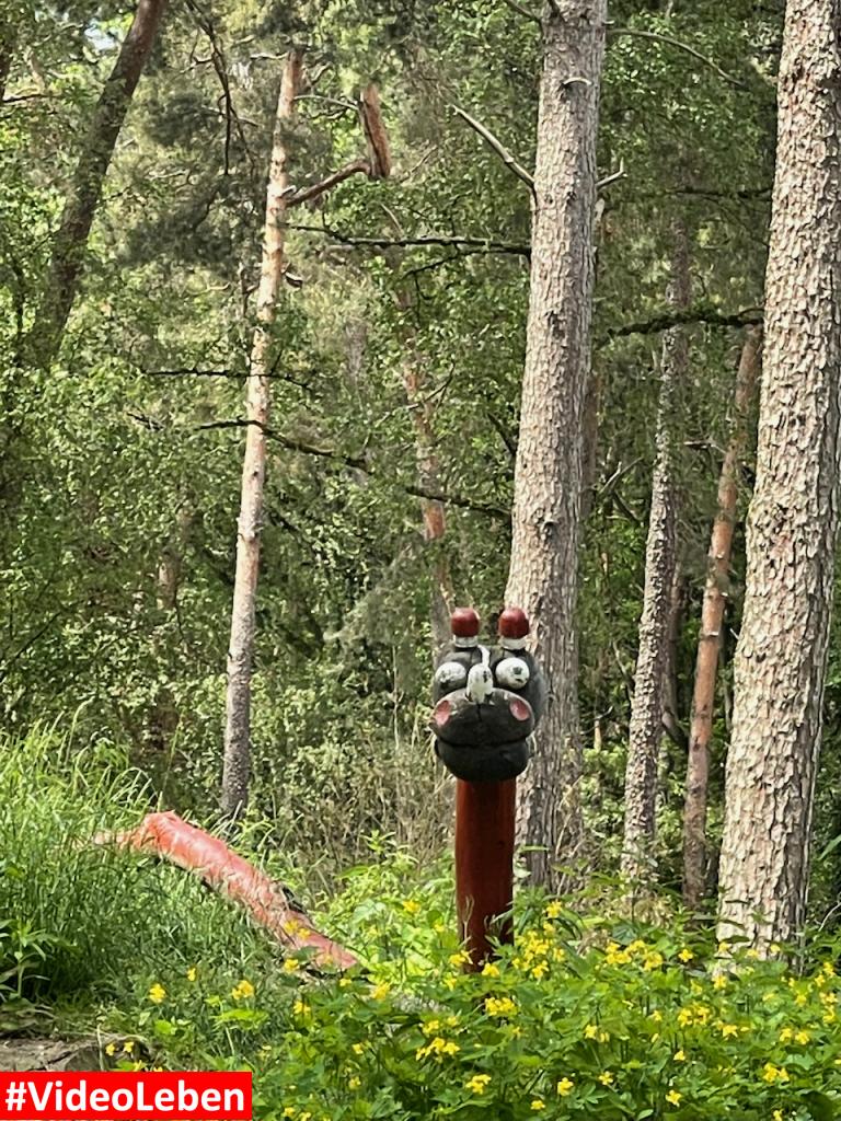Natur- und Tierpark Brüggen - Abenteuerspielplatz - #VideoLeben